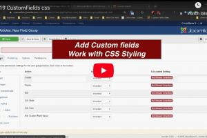 video customfields css
